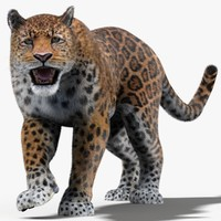 3d max fur animation