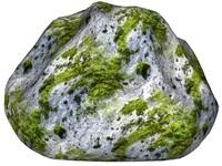 Mossy rock 147