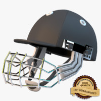 3d model cricket helmet