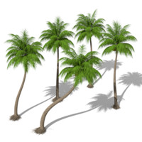 fbx coconut palms