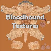 Bloodhound Tan & Tawny Fur Texture
