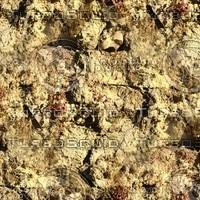 Stone wall 110