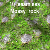 Mossy Rock Collection 15