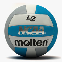 molten l2 volleyball dxf