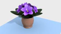 violets 3d model