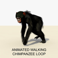 3d model rigged chimpanzee walking animations