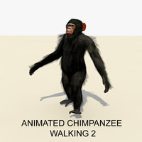 3d rigged chimpanzee walking animations