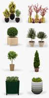 3d model plants