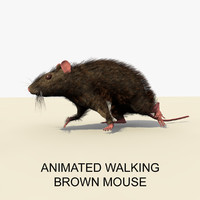 brown mouse animations 3d c4d