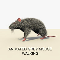 3d grey mouse animations model