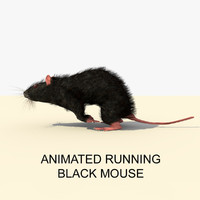 3d model black running mouse animations
