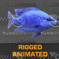 fish animation max