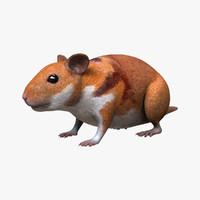 hamster 3d fbx