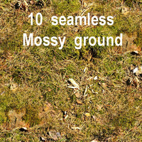 Mossy Ground Collection 3