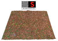 3ds max autumn lawn ground scan