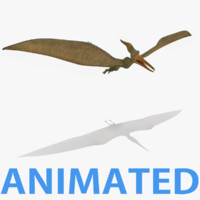 realistic pteranodon 3d 3ds