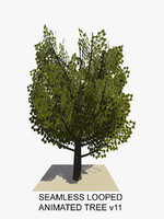 tree animations 3d c4d