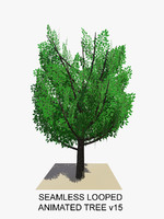 tree animations 3d model
