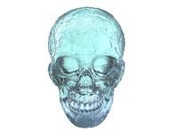 3d model crystal skull scan hd