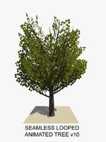 3dsmax tree animations