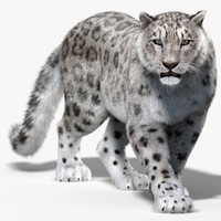 3ds max snow leopard fur cat