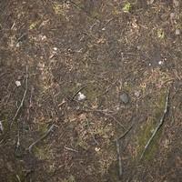 Ground #03 Texture