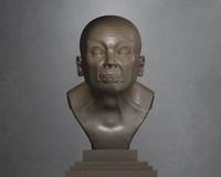 ultimate busts 3d obj
