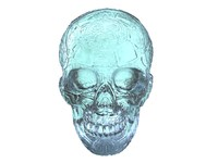 crystal skull scan hd max