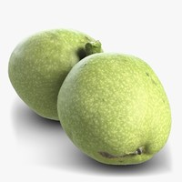 3d model green walnut