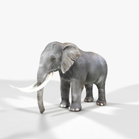 3d photorealistic elephants