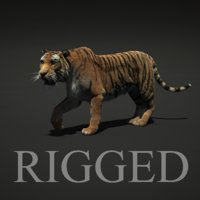 3d tiger fur rigged model