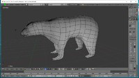 3d rigged polar bear model