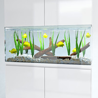 3d marine aquarium model