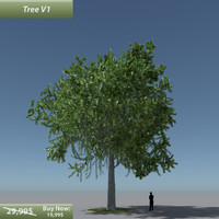 tree oak v1 3d model