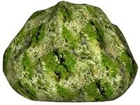 Mossy rock 151