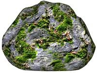 Mossy rock 153