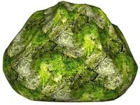 Mossy rock 152