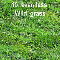 Wild Grass Collection 2