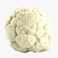 cauliflower flower 3d model