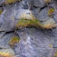 Rock 211