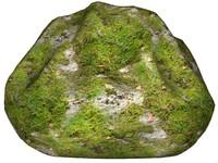 Mossy rock 155