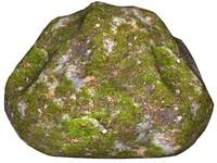 Mossy rock 157