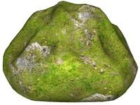 Mossy rock 156
