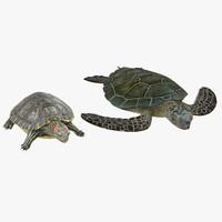 3d model turtles set pond
