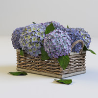 3d hydrangea design
