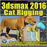 3ds max 2016 Cat Rigging volume 6.0 Italiano cd front