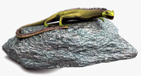 photorealistic lizard rigged 3d 3ds