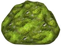 Mossy rock 160