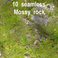 Mossy Rock Collection 16