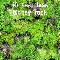 Mossy Rock Mega Collection 4